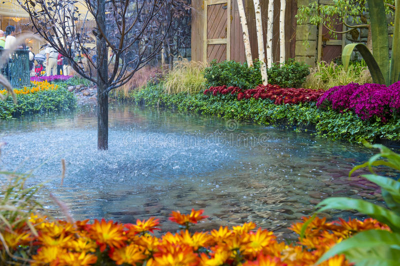 Download Bellagio Hotel Conservatory & Botanical Gardens Editorial Photography - Image: 30417222