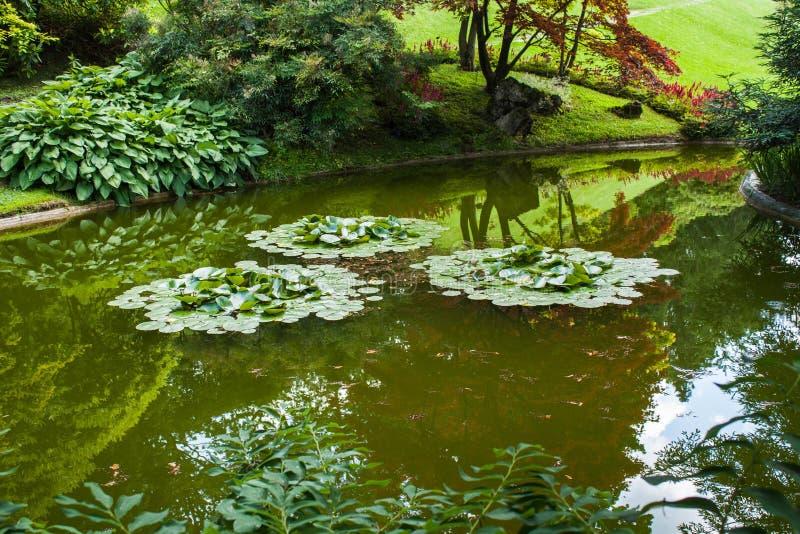 Bellagio stad op Meer Como, Italië Het gebied van Lombardije Italiaans beroemd oriëntatiepunt, het Park van Villamelzi Botanische royalty-vrije stock foto's
