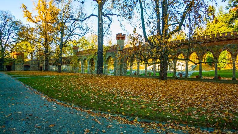 Belle allée romantique en parc avec les arbres colorés et la lumière du soleil fond de nature d'automne - Bilder image libre de droits