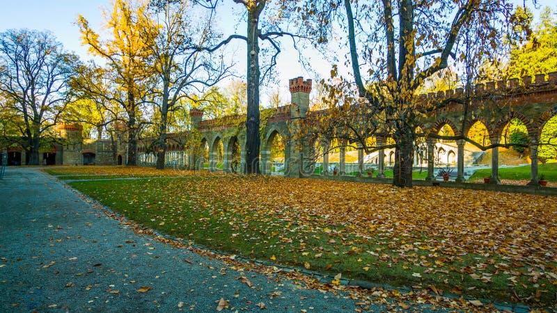 Belle allée romantique en parc avec les arbres colorés et la lumière du soleil fond naturel d'automne - Bilderr - automne en parc photo libre de droits
