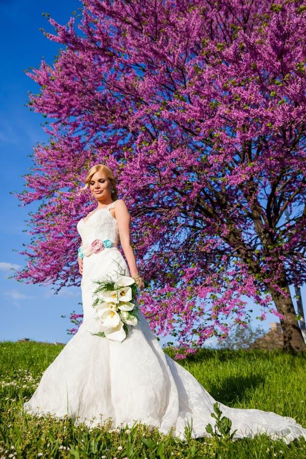 Belle blonde de jeune mariée dehors en parc photos stock