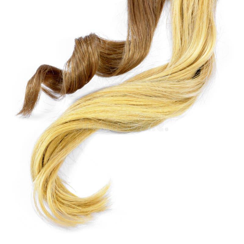 Belle blonde et cheveux de brune, d'isolement sur le fond blanc photographie stock
