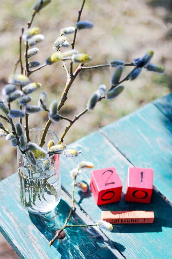 Belle branche de saule dans un vase image artistique romantique de nature de ressort Paume dimanche orthodoxe, bouquet et vous photographie stock libre de droits