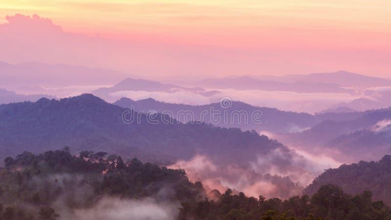Belle brume crépusculaire de montagne dans la forêt tropicale photo stock