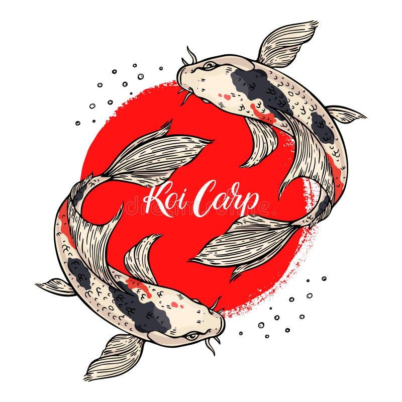 Belle carte des carpes de koi illustration libre de droits