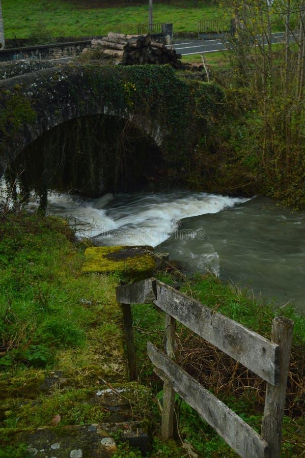 Belle carte postale de photo avec une rivière courageuse, Roman Bridge And une montagne des rondins fraîchement coupés humides pa photographie stock