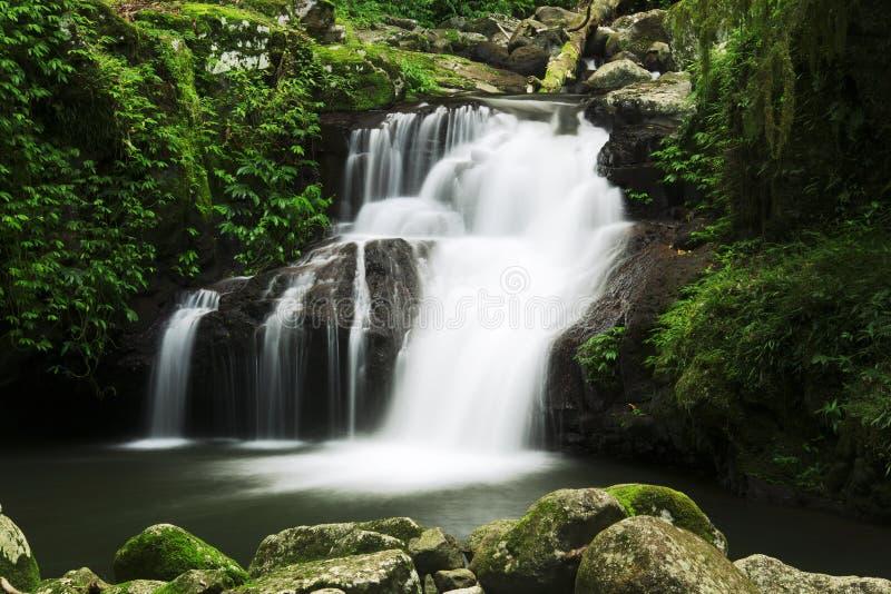 Belle cascade à écriture ligne par ligne photographie stock