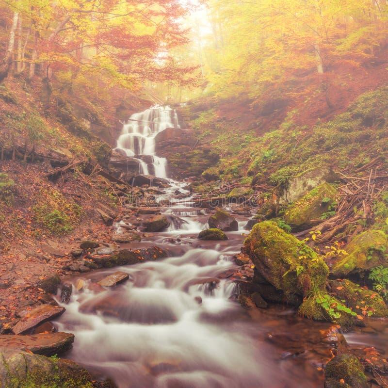 belle cascade à écriture ligne par ligne d'automne image stock