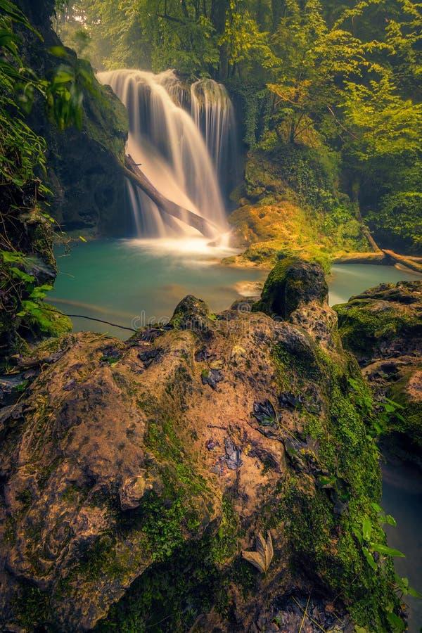 Belle cascade avec un rondin en bois et une roche moite dans le premier plan photo libre de droits