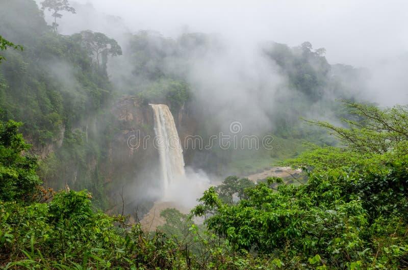 Belle cascade cachée d'Ekom profondément dans la forêt tropicale tropicale du Cameroun, Afrique image libre de droits
