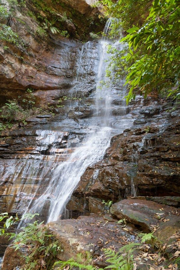 Belle cascade dans l'eau de forêt tropicale circulant sur la roche images libres de droits