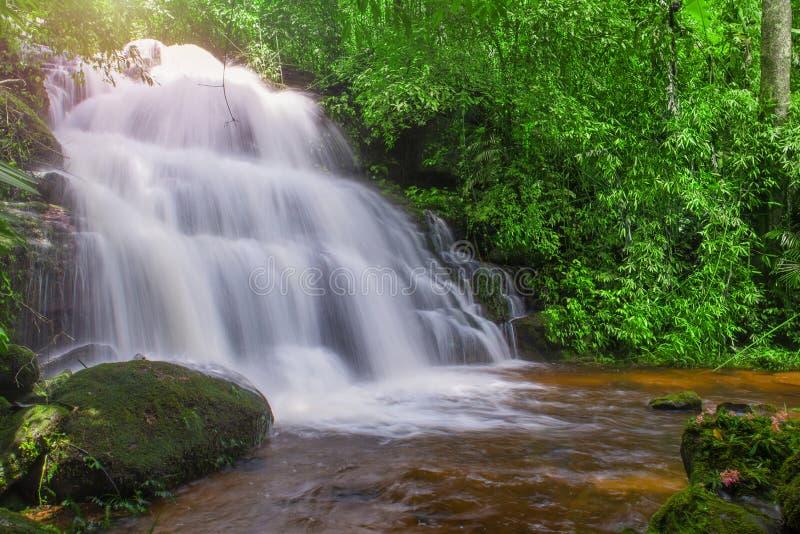 belle cascade dans la forêt tropicale au phet de montagne d'idiot de baquet de phu photo libre de droits