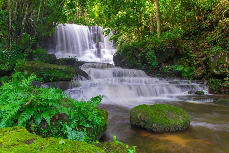 belle cascade dans la forêt tropicale au phet de montagne d'idiot de baquet de phu image stock