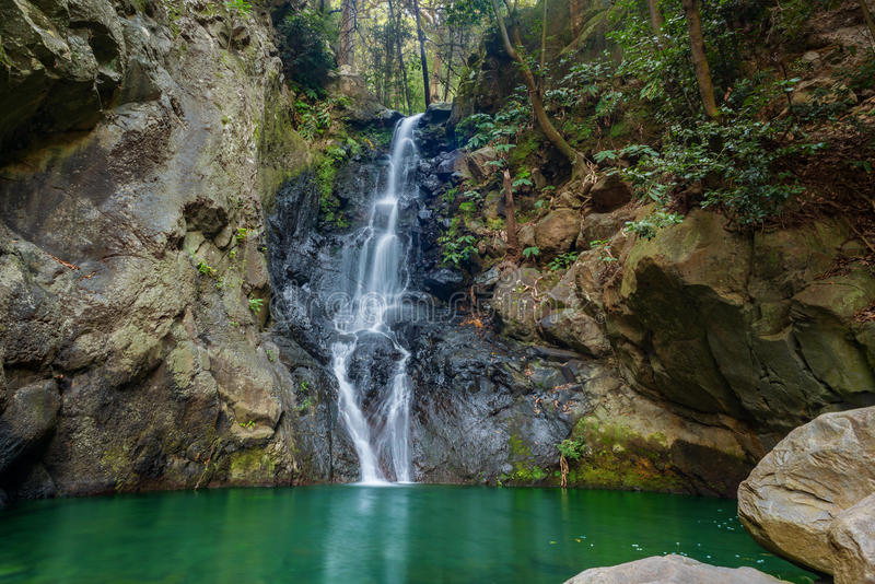 Belle cascade dans la forêt tropicale tropicale de la Madère photo libre de droits