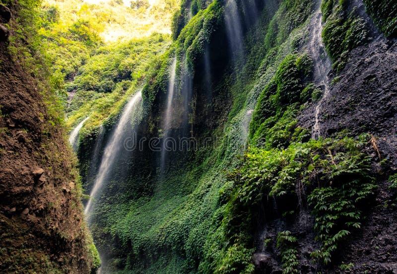 Belle cascade de Madakaripura en vallée rocheuse photographie stock