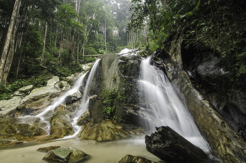 Belle cascade entourée par l'arbre en baisse de forestDead vert de nature dans l'eau, photos stock