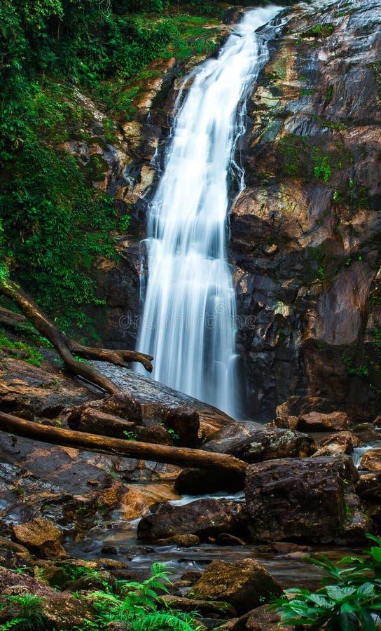 Belle cascade sur la côte du Brésil photographie stock