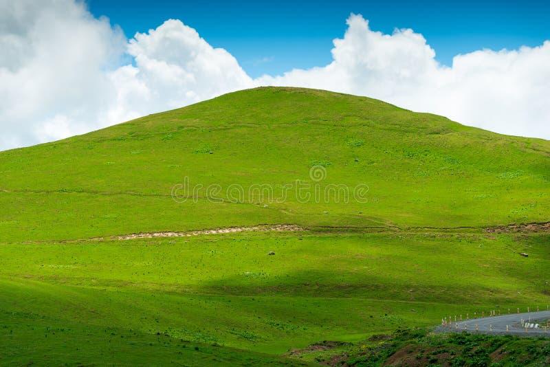 Belle colline verte plate sur un fond de ciel bleu un jour clair d'été, Caucase en juin photos stock