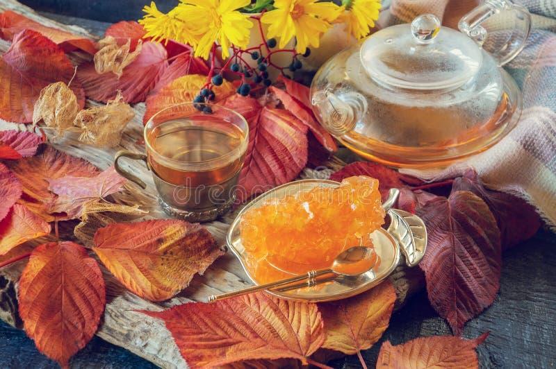 Belle composition en automne avec le th? feuilles d'automne et une tasse avec du sucre clair de théière et de raisin sur un fond  images libres de droits