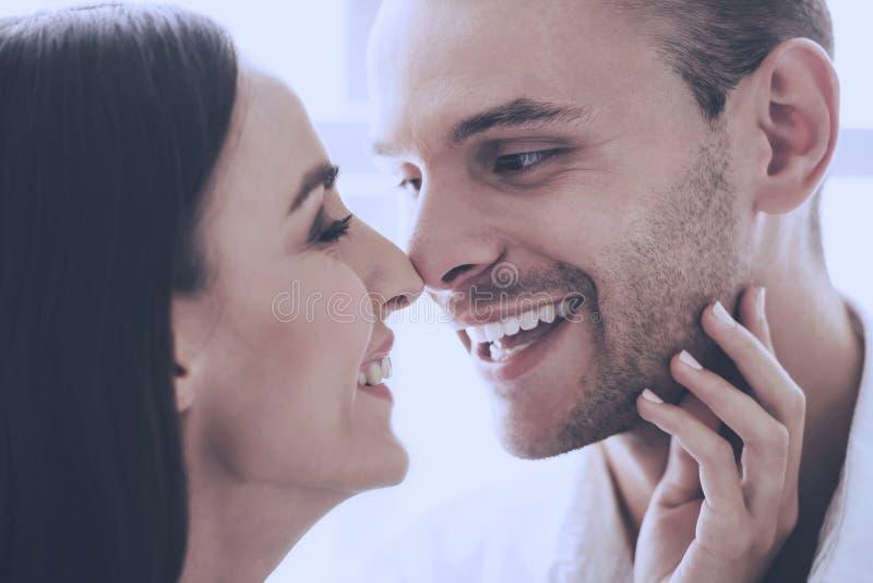 Belle coppie amorose che toccano i loro nasi immagine stock