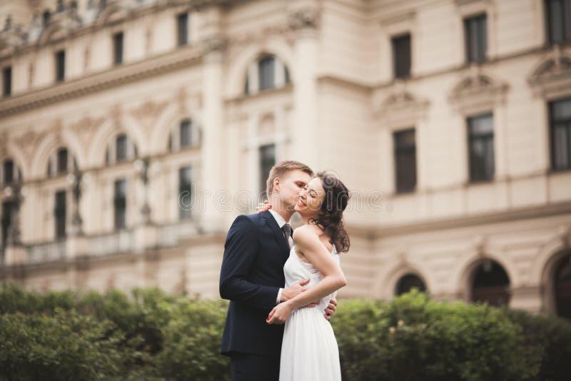 Belle coppie di nozze, sposa, sposo che bacia e che abbraccia contro lo sfondo del teatro fotografia stock