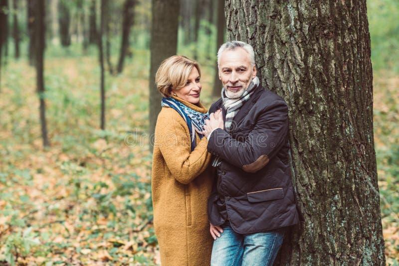 Belle coppie mature nel parco di autunno immagini stock libere da diritti