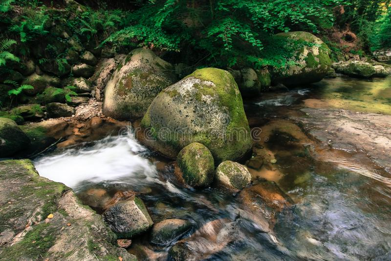 Belle crique fraîche dans des spiritueux de nature de forêt noire photo stock