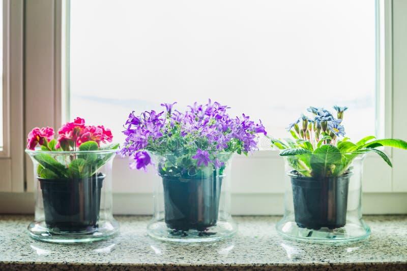 belle d coration la maison avec les pots de fleurs en verre sur le rebord de fen tre photo. Black Bedroom Furniture Sets. Home Design Ideas