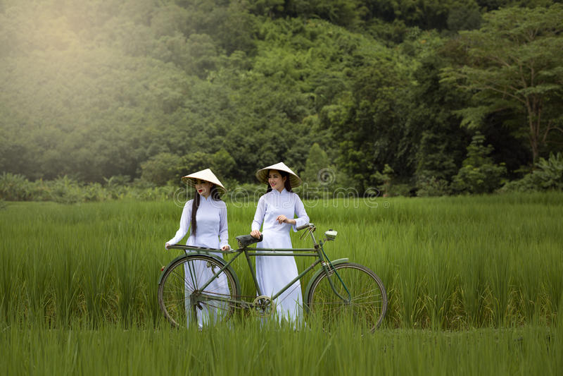 Belle donne dell'Asia in vestito tradizionale da Ao Dai Vietnam fotografia stock libera da diritti