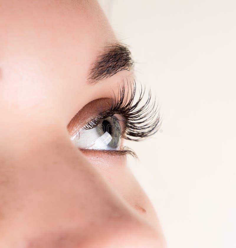Belle extension de cil de jeune femme Oeil de femme avec de longs cils Concept de salon de beauté image stock