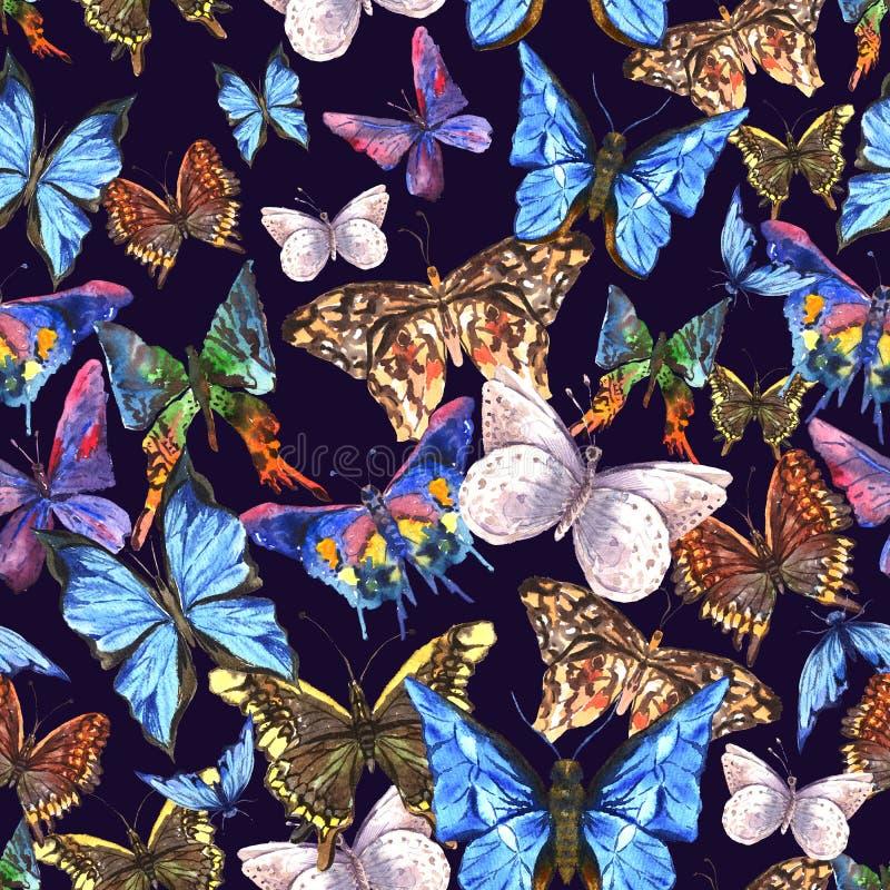 Download Belle Farfalle Variopinte Dell'acquerello Di Estate Illustrazione di Stock - Illustrazione di grafico, stile: 56889640