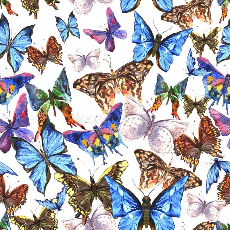 Download Belle Farfalle Variopinte Dell'acquerello Di Estate Illustrazione di Stock - Illustrazione di molla, telaio: 56890085