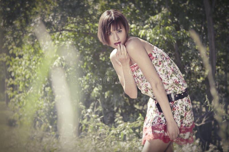 Belle femme photo stock