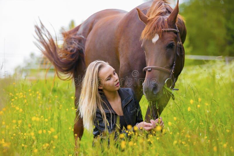 Belle femme alimentant son cheval Arabe avec des casse-croûte dans le domaine image stock