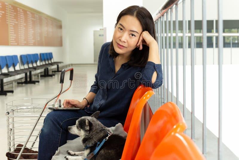 Belle femme avec le chien de chiwawa à l'hôpital de vétérinaire photos libres de droits