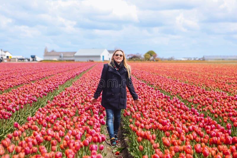 Belle femme blonde aux cheveux longs rêveuse portant la position bleue de manteau dans un domaine des tulipes roses photo stock