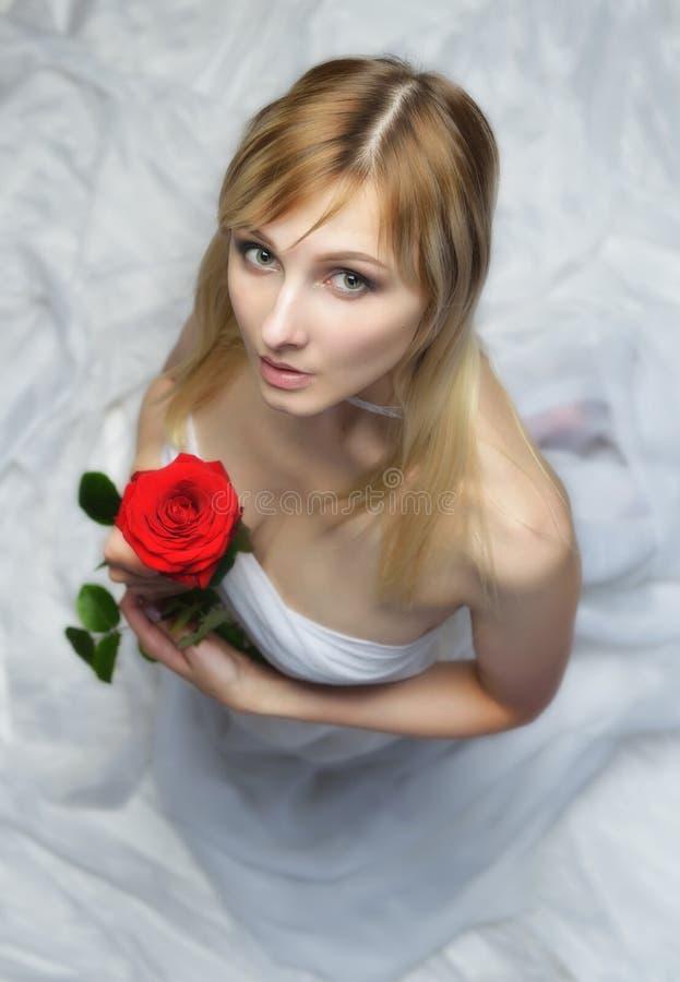 Belle femme blonde avec la rose rouge image libre de droits