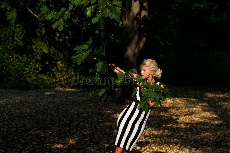 Belle femme blonde dans la forêt d'automne au coucher du soleil photos libres de droits