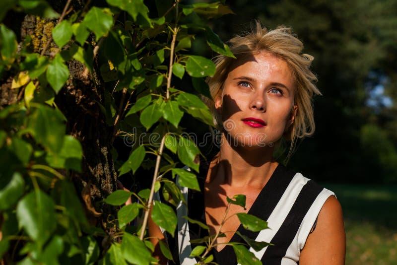 Belle femme blonde dans la forêt d'automne au coucher du soleil photos stock