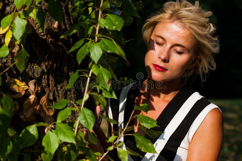 Belle femme blonde dans la forêt d'automne au coucher du soleil images libres de droits
