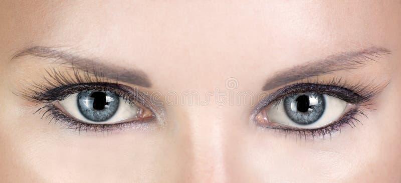 Belle femme d'yeux bleus avec de longs cils photo libre de droits