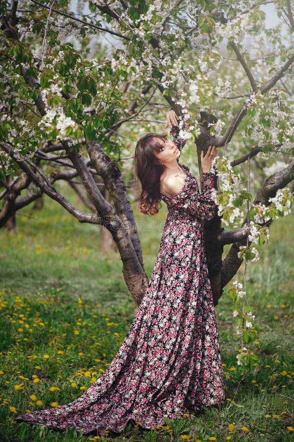 Belle femme dans la robe étreignant l'arbre dans le jardin photo stock