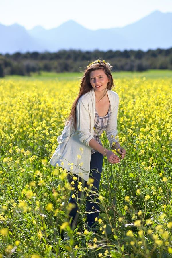 Belle femme dans un domaine de graine de colza d'or. images libres de droits