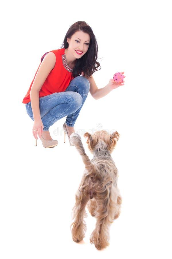Belle femme jouant avec l'isolat de terrier de Yorkshire de petit chien photos stock