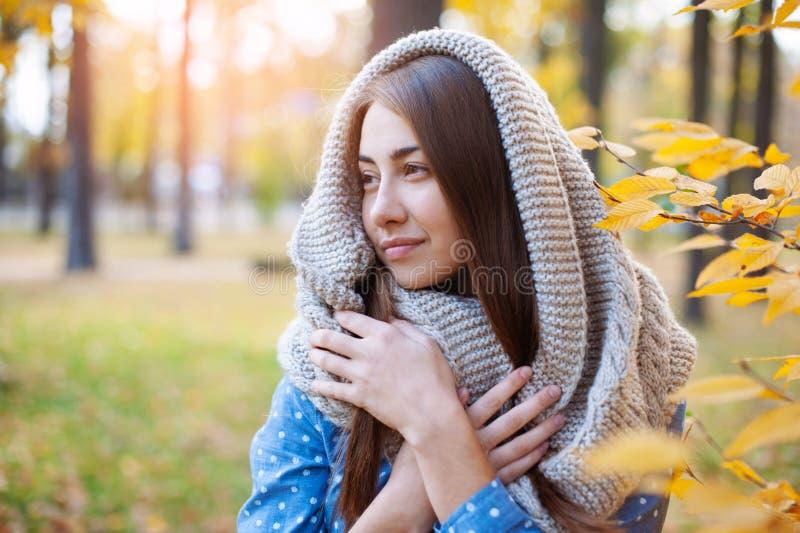 Belle femme mignonne de sourire marchant en parc jaune d'automne La fille knitten dedans l'?charpe pr?s de l'arbre et elle est he photos stock