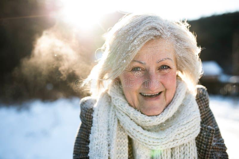 Belle femme supérieure sur une promenade, couverte par la neige photographie stock