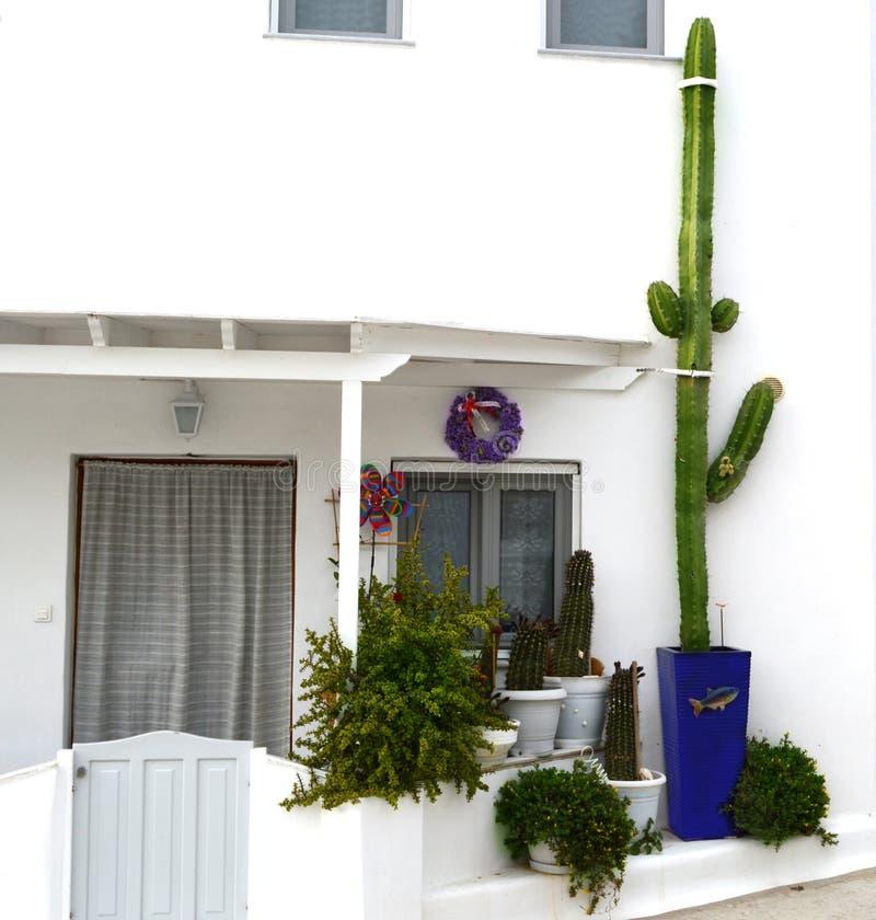 Belle fenêtre de la Grèce Les fleurs colorées tressent et des usines et des feuilles de cactus Porte de décoration et guirlande d photographie stock libre de droits