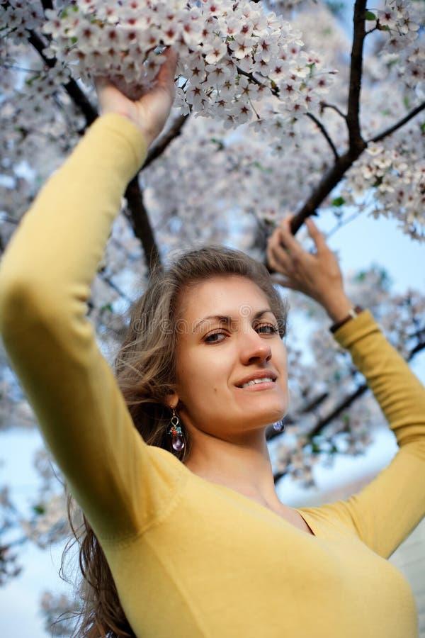 Belle fille avec sakura de floraison photo stock