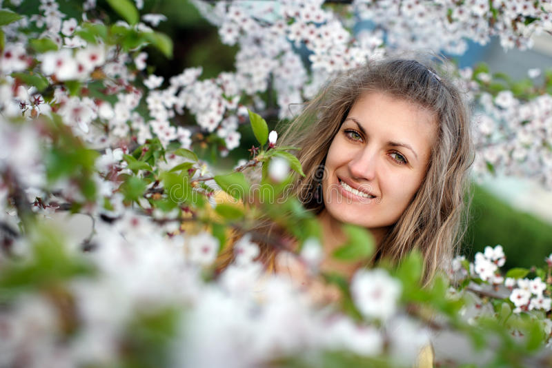 Belle fille avec sakura de floraison image stock