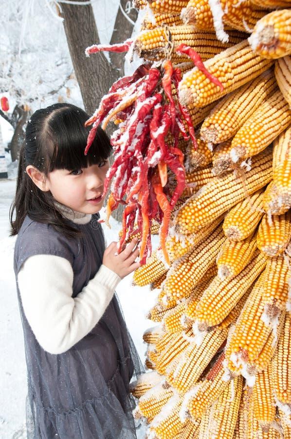 Belle fille chinoise avec des maïs image libre de droits